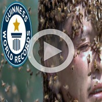 This New Guinness World Record Will Leave You Shocked!