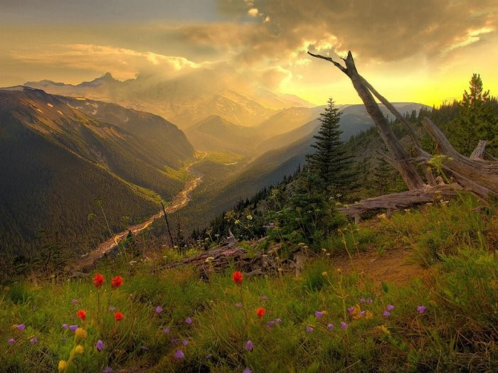 This is Mount Rainier featuring a very awesome view - simply refreshing!