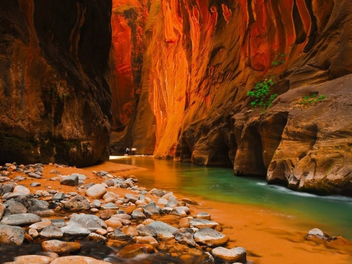 Who've thought that the bottom of a Canyon could also give you awesome sites; this is from the Zion Canyon