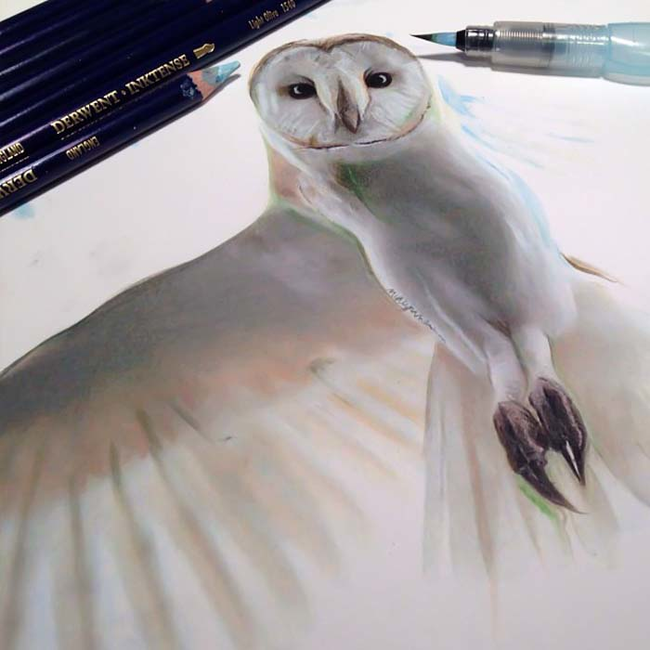 Mighty White Owl