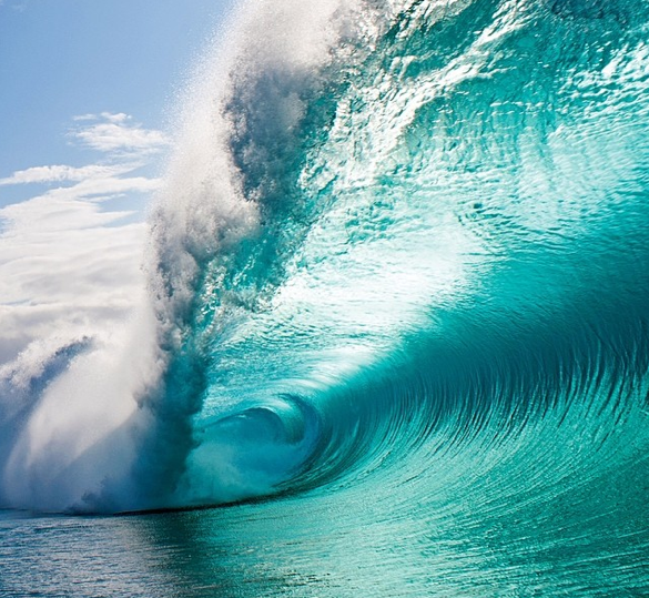 Fantabulous Wave!