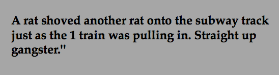 That rat shouldn't have betrayed the other rat - he really does mean business.